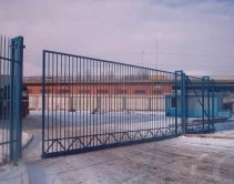 синие на металлическом заборе